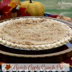 Amish Apple Crumb Pie – Weekend Potluck 293