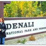 Denali in Full Autumn Splendor