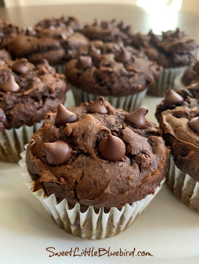 CHOCOLATE PUMPKIN MUFFINS (SUPER EASY)