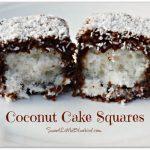 Coconut Cake Squares (Lamingtons)