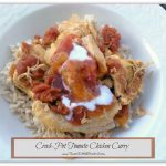 Tried & True Tuesday ~ Easy Crock-Pot Tomato Chicken Curry