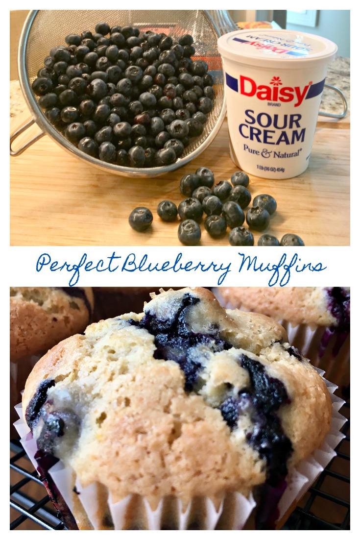 PERFECT BLUEBERRY MUFFINS RECIPE - Sweet Little Bluebird