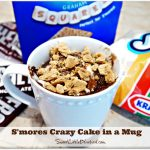 S'mores Crazy Cake in a Mug