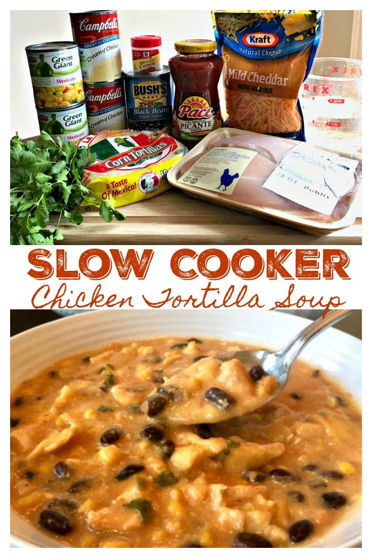 SLOW COOKER CHICKEN TORTILLA SOUP - Easy to Make, Absolutely Delicious!