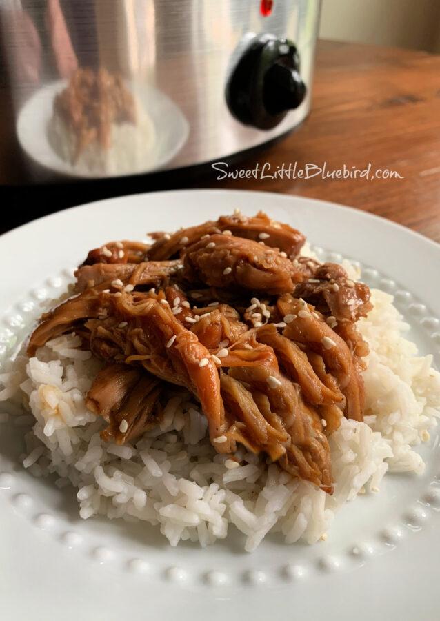 Easy Slow Cooker Teriyaki Chicken sprinkled with Sesame Seeds on Top