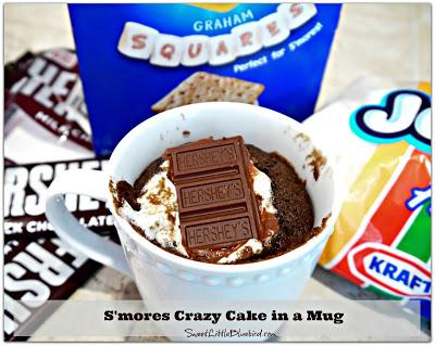S'MORES CRAZY MUG CAKE