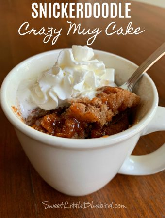 SNICKERDOODLE CRAZY MUG CAKE - Sweet Little Bluebird