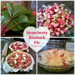 Strawberry Rhubarb Pie ~ A Summer Favorite
