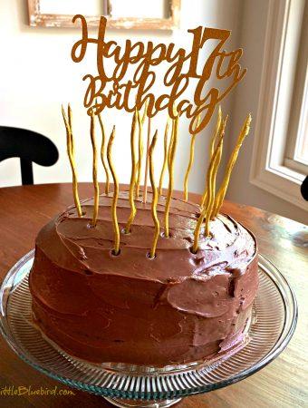 TWO-LAYER CRAZY CAKE (NO EGGS< MILK or BUTTER) - Sweet Little Bluebird