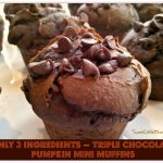 Triple Chocolate Pumpkin Mini Muffins – Only 3 Ingredients